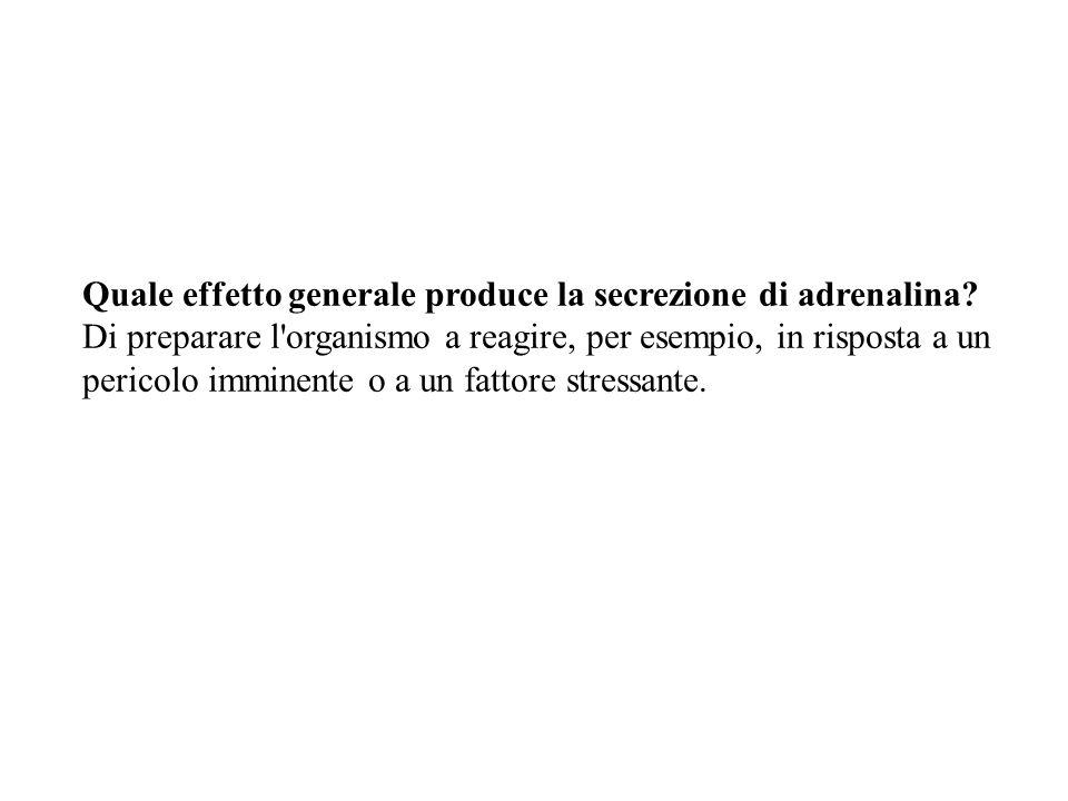 Quale effetto generale produce la secrezione di adrenalina