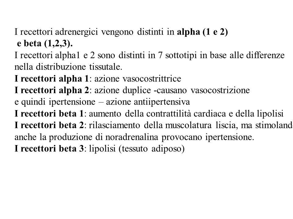 I recettori adrenergici vengono distinti in alpha (1 e 2)
