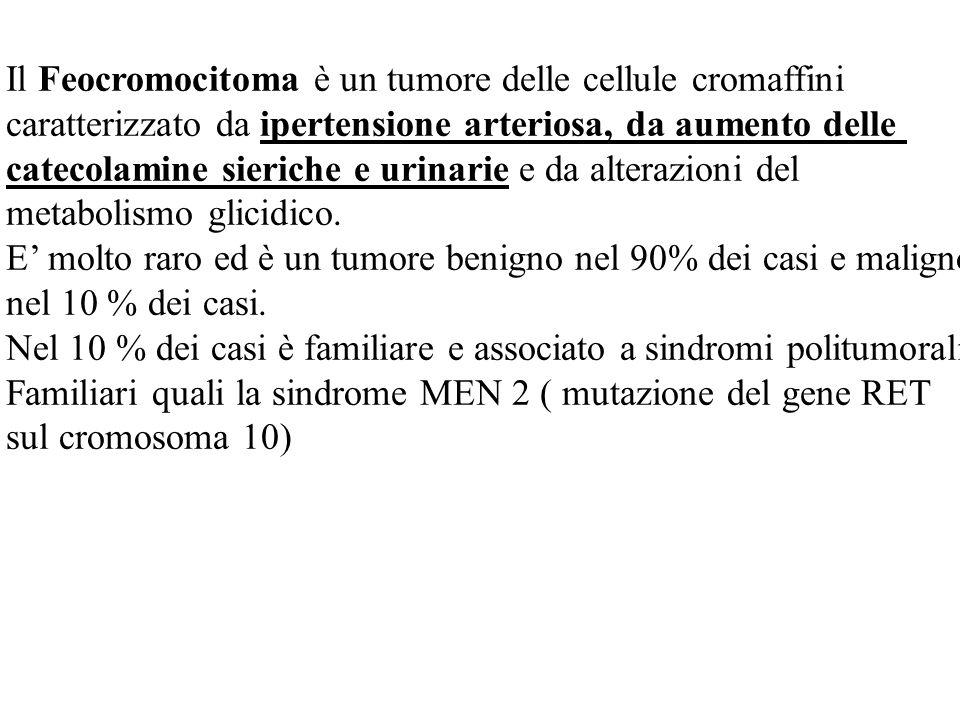 Il Feocromocitoma è un tumore delle cellule cromaffini