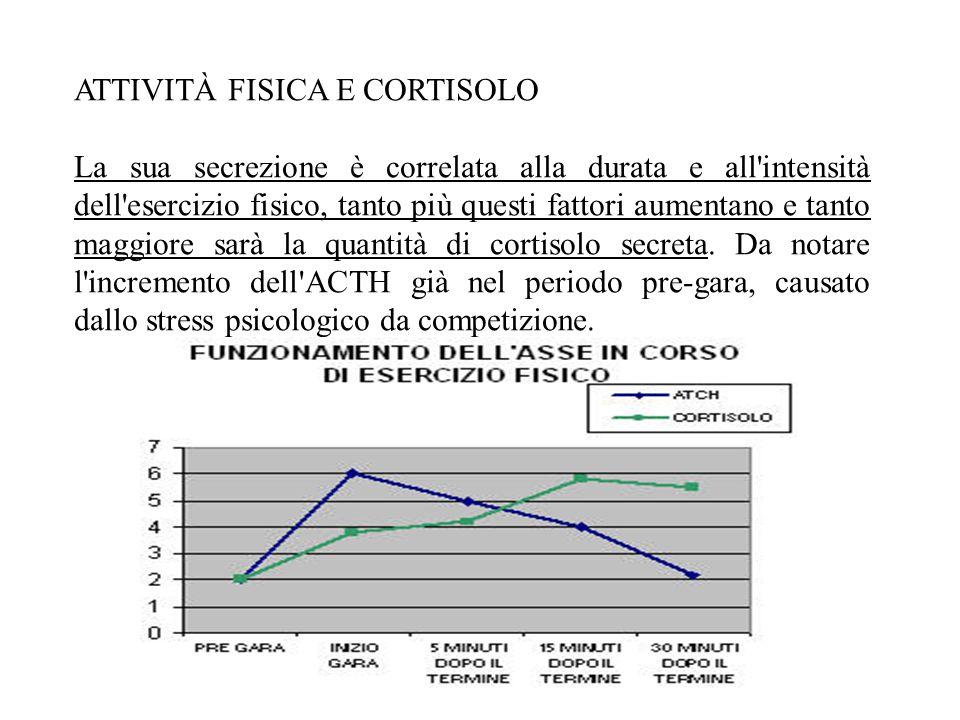 ATTIVITÀ FISICA E CORTISOLO