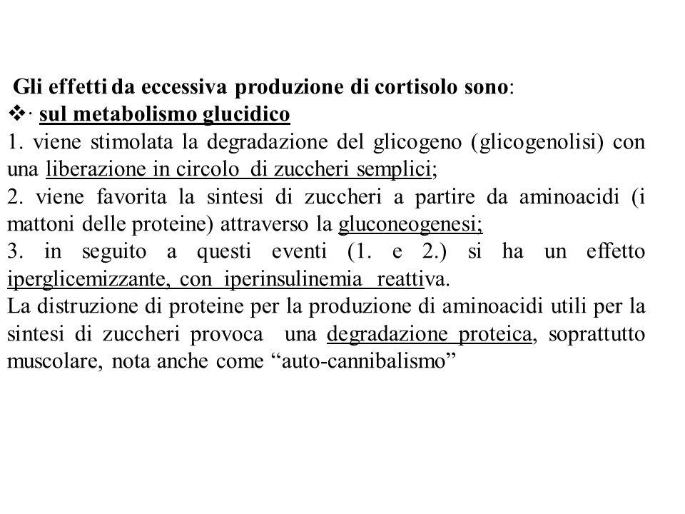 Gli effetti da eccessiva produzione di cortisolo sono:
