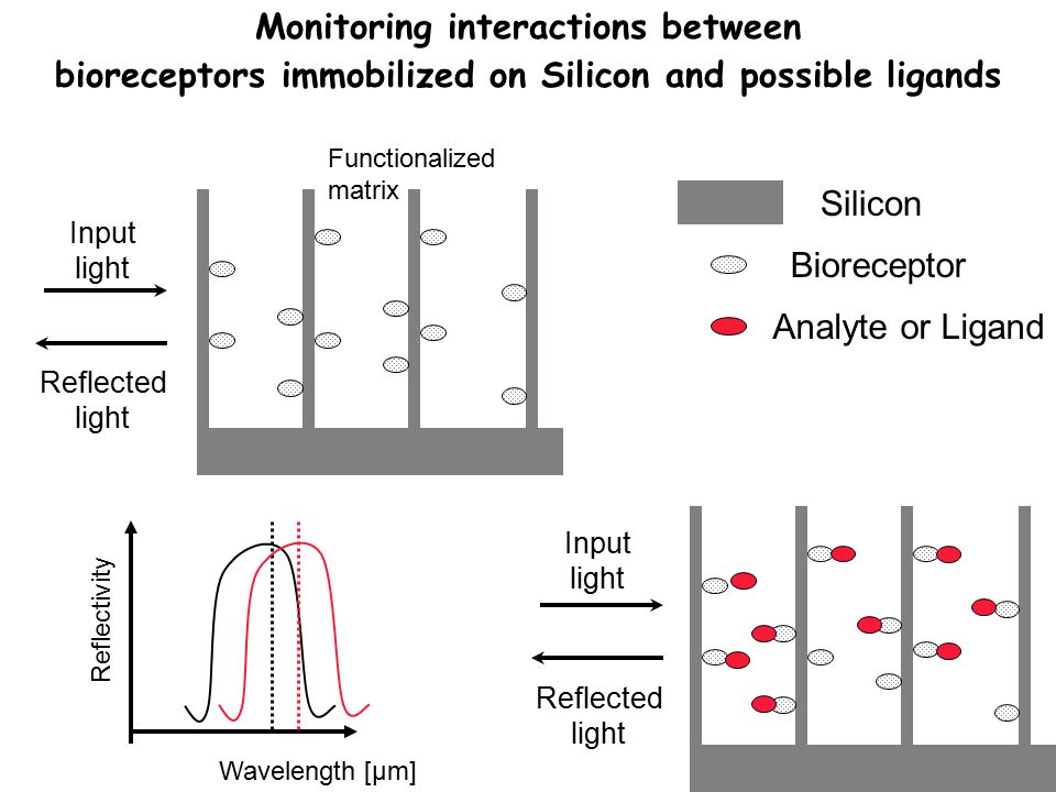 Monitoring interactions between