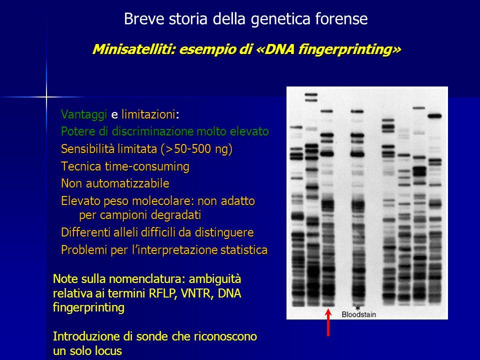 Minisatelliti: esempio di «DNA fingerprinting»