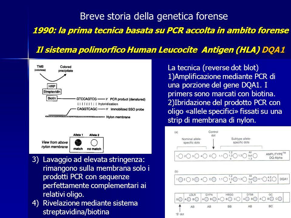 Breve storia della genetica forense