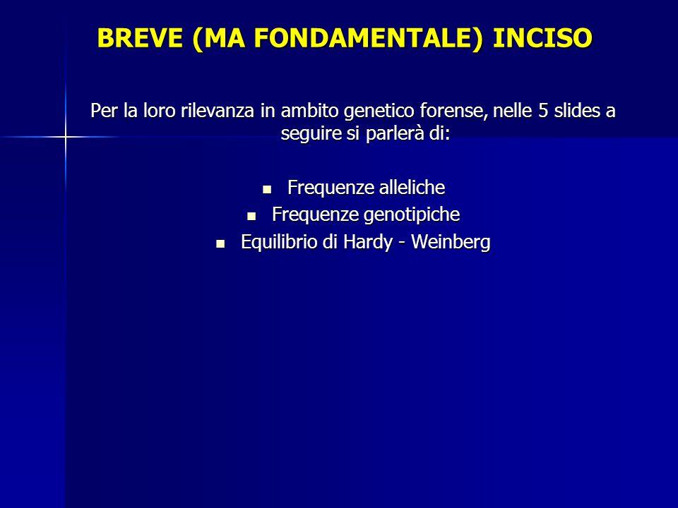 BREVE (MA FONDAMENTALE) INCISO