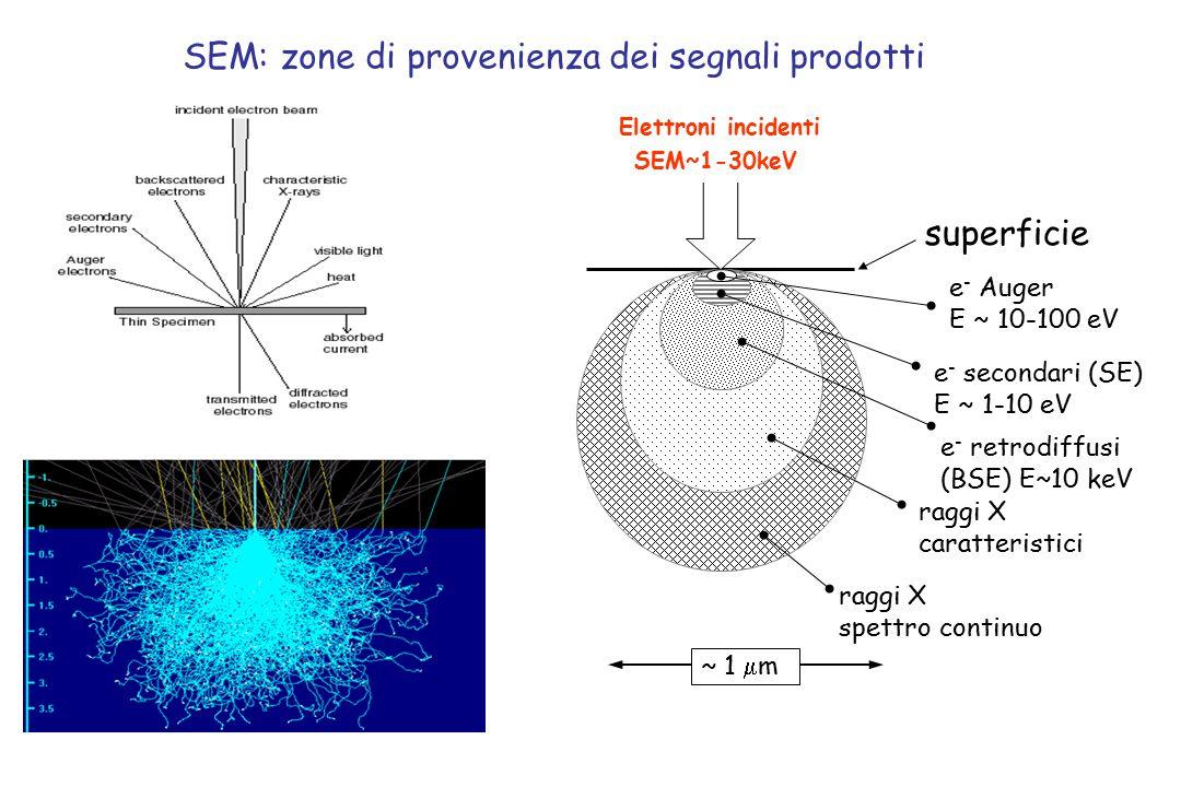 SEM: zone di provenienza dei segnali prodotti