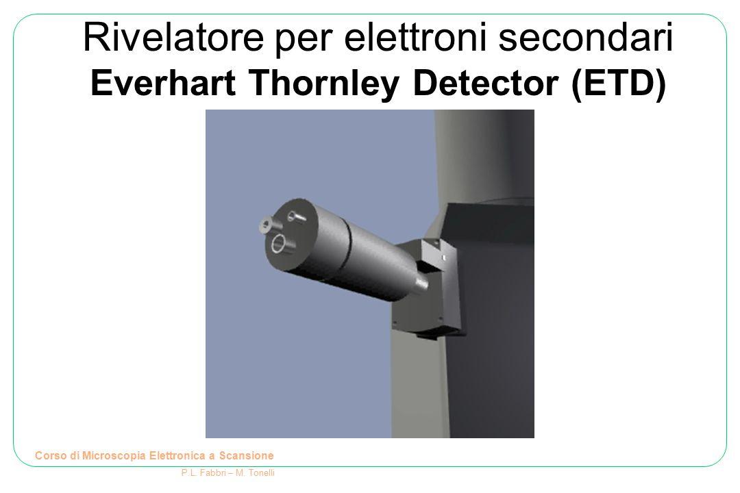 Rivelatore per elettroni secondari Everhart Thornley Detector (ETD)