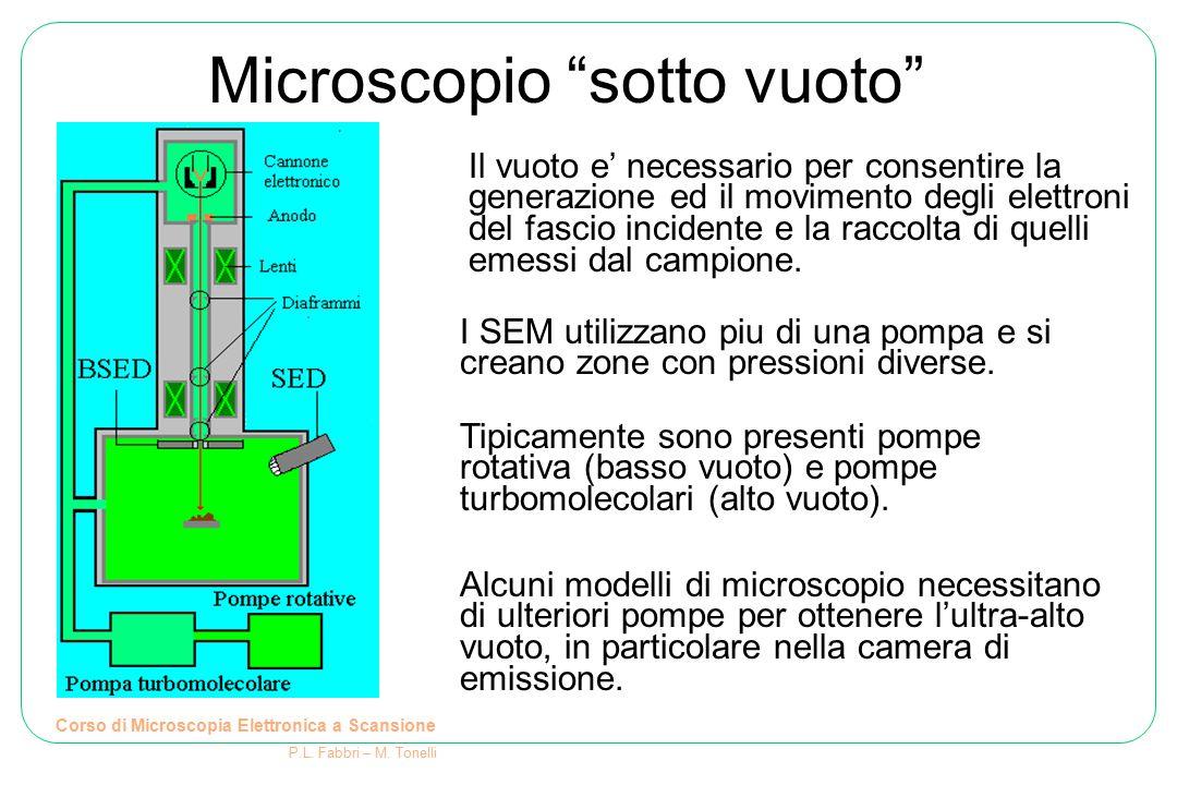 Microscopio sotto vuoto