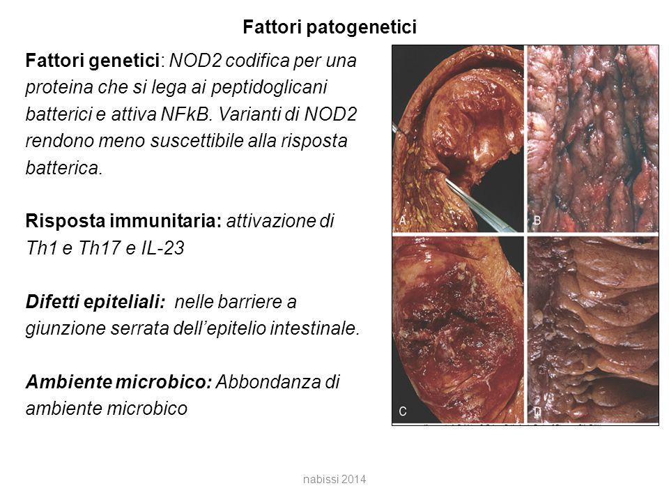 Fattori patogenetici