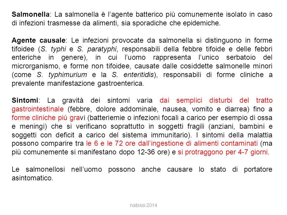Salmonella: La salmonella è l'agente batterico più comunemente isolato in caso di infezioni trasmesse da alimenti, sia sporadiche che epidemiche.