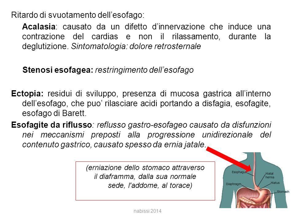 Ritardo di svuotamento dell'esofago: Acalasia: causato da un difetto d'innervazione che induce una contrazione del cardias e non il rilassamento, durante la deglutizione. Sintomatologia: dolore retrosternale Stenosi esofagea: restringimento dell'esofago Ectopia: residui di sviluppo, presenza di mucosa gastrica all'interno dell'esofago, che puo' rilasciare acidi portando a disfagia, esofagite, esofago di Barett. Esofagite da riflusso: reflusso gastro-esofageo causato da disfunzioni nei meccanismi preposti alla progressione unidirezionale del contenuto gastrico, causato spesso da ernia jatale.