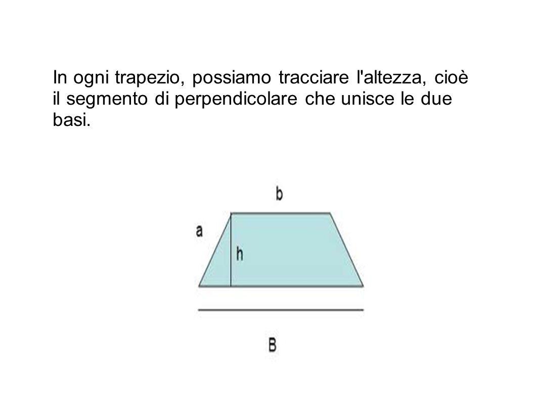 In ogni trapezio, possiamo tracciare l altezza, cioè il segmento di perpendicolare che unisce le due basi.