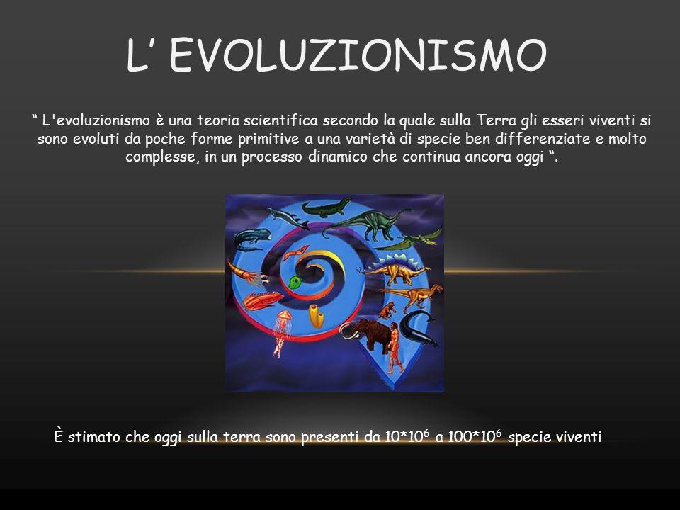 L' EVOLUZIONISMO