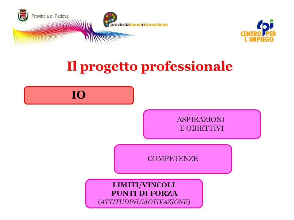 Il progetto professionale