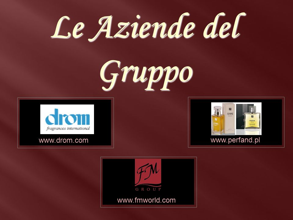 Le Aziende del Gruppo www.drom.com www.drom.com www.perfand.pl