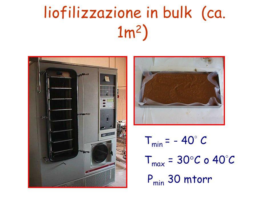 liofilizzazione in bulk (ca. 1m2)