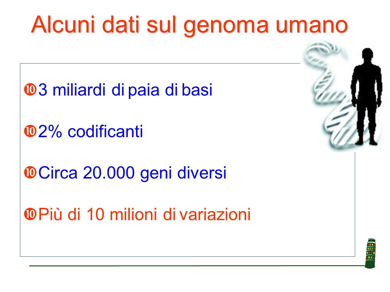 Alcuni dati sul genoma umano