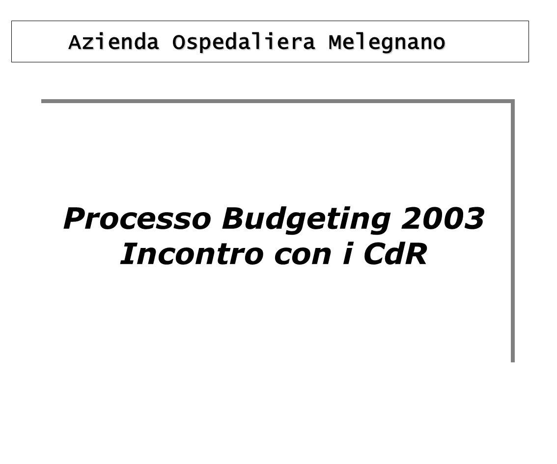 Processo Budgeting 2003 Incontro con i CdR