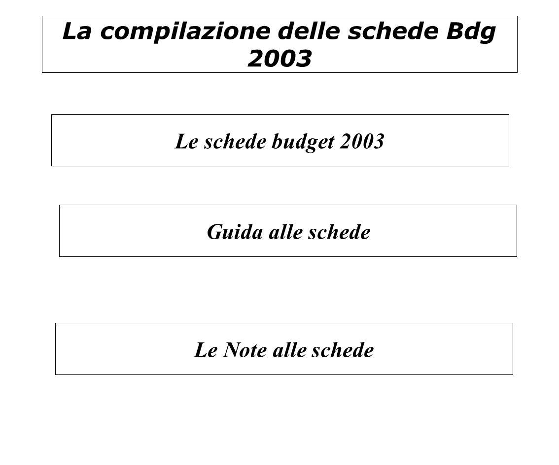 La compilazione delle schede Bdg 2003