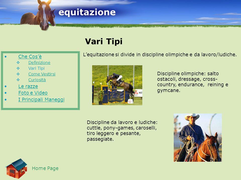 equitazione Vari Tipi. L'equitazione si divide in discipline olimpiche e da lavoro/ludiche. Che Cos'è.