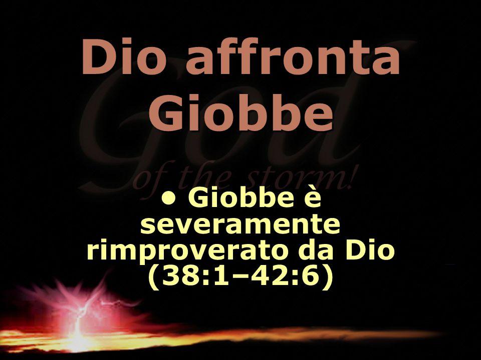 • Giobbe è severamente rimproverato da Dio (38:1–42:6)