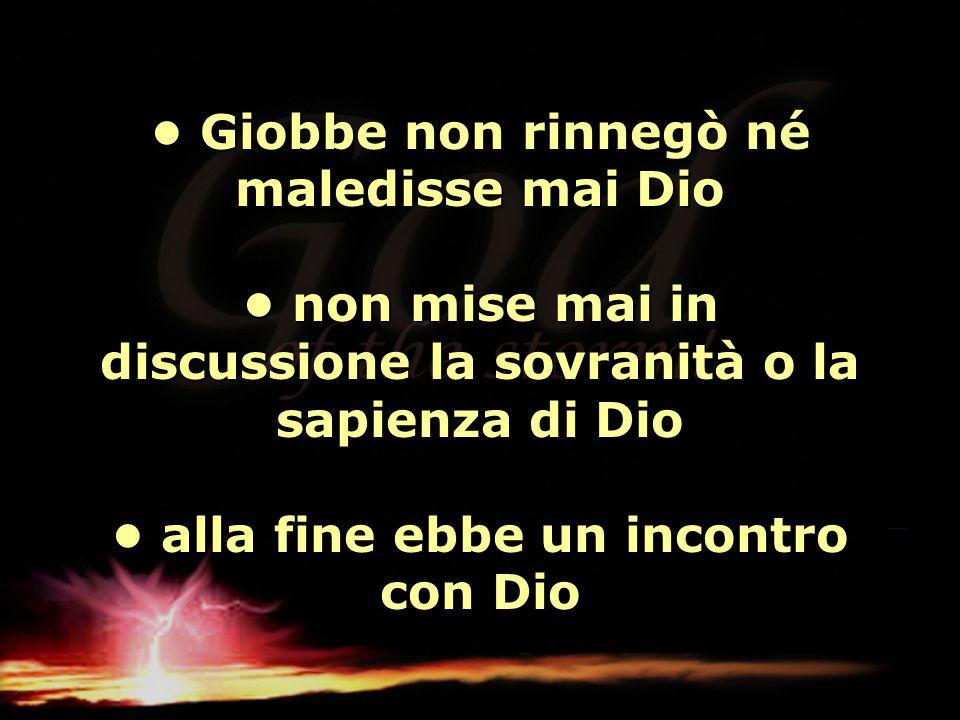 • Giobbe non rinnegò né maledisse mai Dio • non mise mai in discussione la sovranità o la sapienza di Dio • alla fine ebbe un incontro con Dio