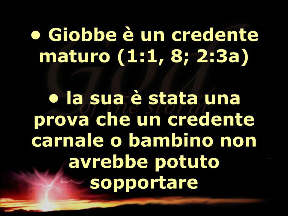 • Giobbe è un credente maturo (1:1, 8; 2:3a) • la sua è stata una prova che un credente carnale o bambino non avrebbe potuto sopportare