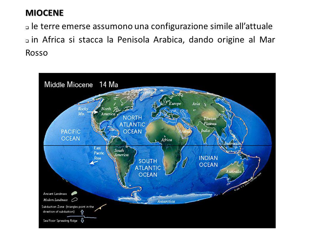 MIOCENE le terre emerse assumono una configurazione simile all'attuale.