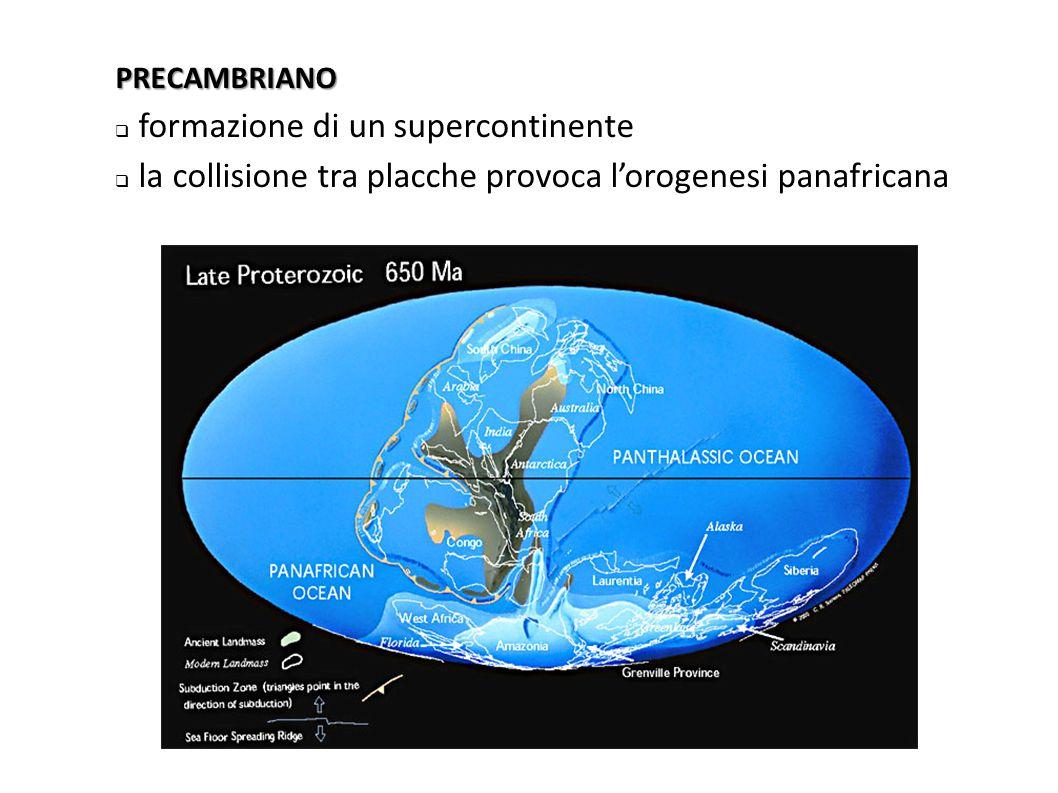 formazione di un supercontinente