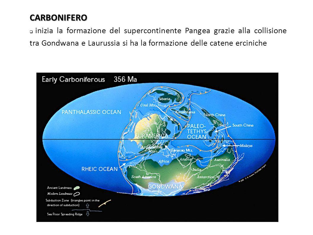 CARBONIFERO