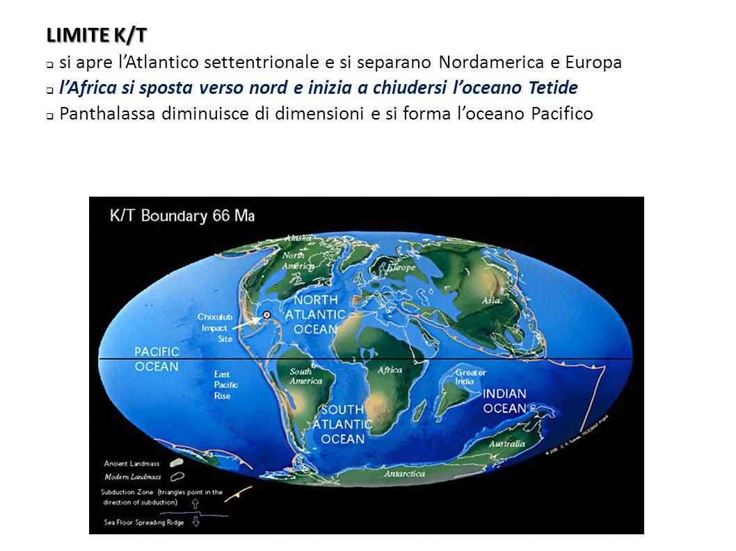 LIMITE K/T si apre l'Atlantico settentrionale e si separano Nordamerica e Europa. l'Africa si sposta verso nord e inizia a chiudersi l'oceano Tetide.