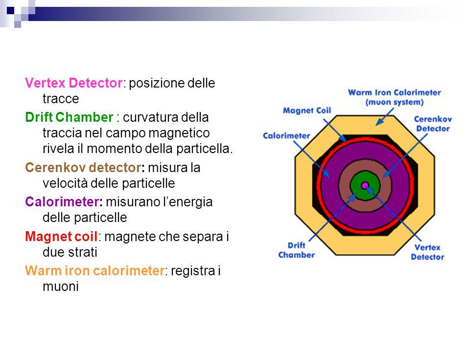 Vertex Detector: posizione delle tracce