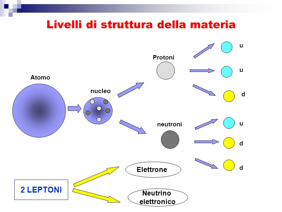 Livelli di struttura della materia