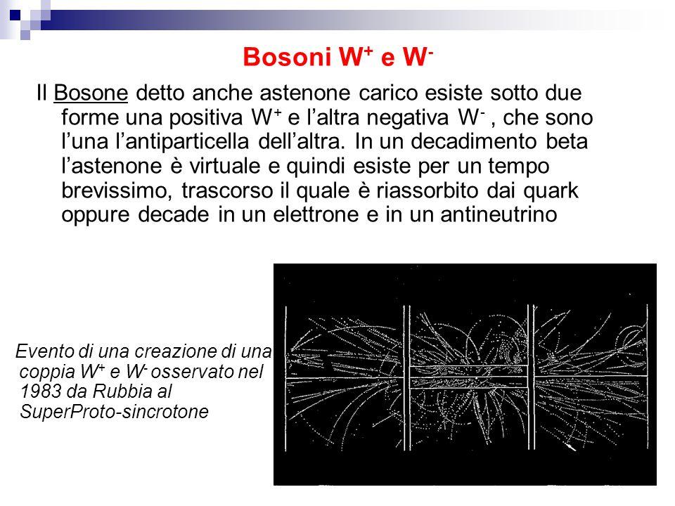 Bosoni W+ e W-