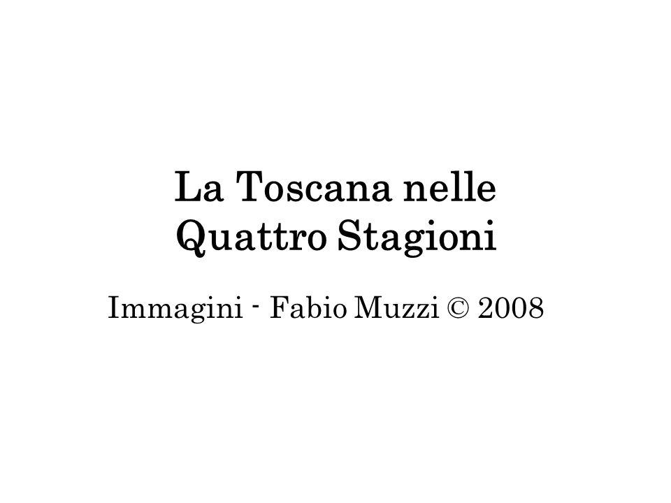 La Toscana nelle Quattro Stagioni
