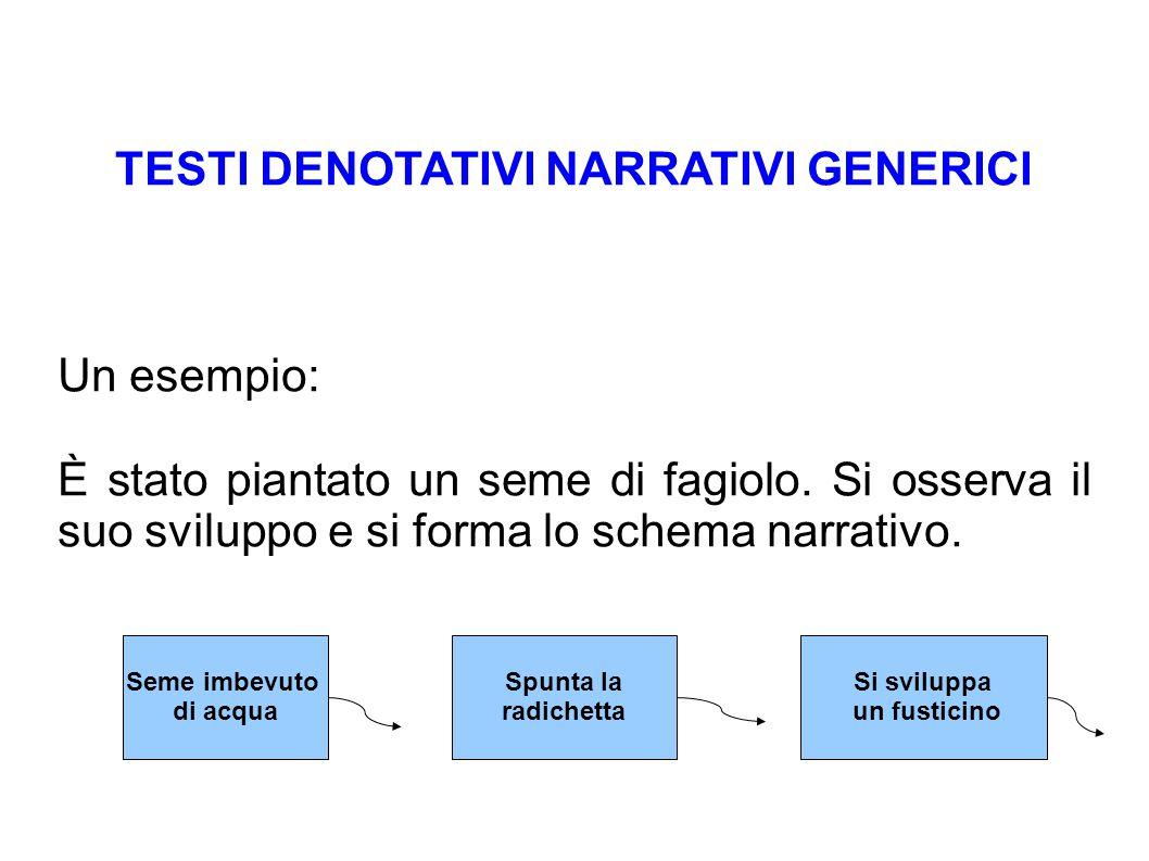 TESTI DENOTATIVI NARRATIVI GENERICI