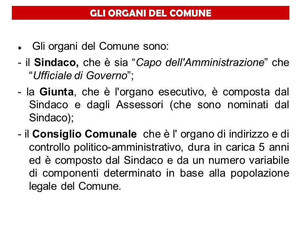 Gli organi del Comune sono: