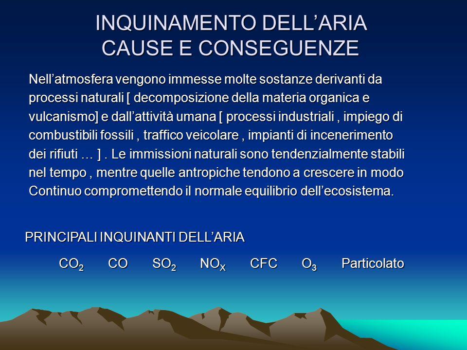 INQUINAMENTO DELL'ARIA CAUSE E CONSEGUENZE