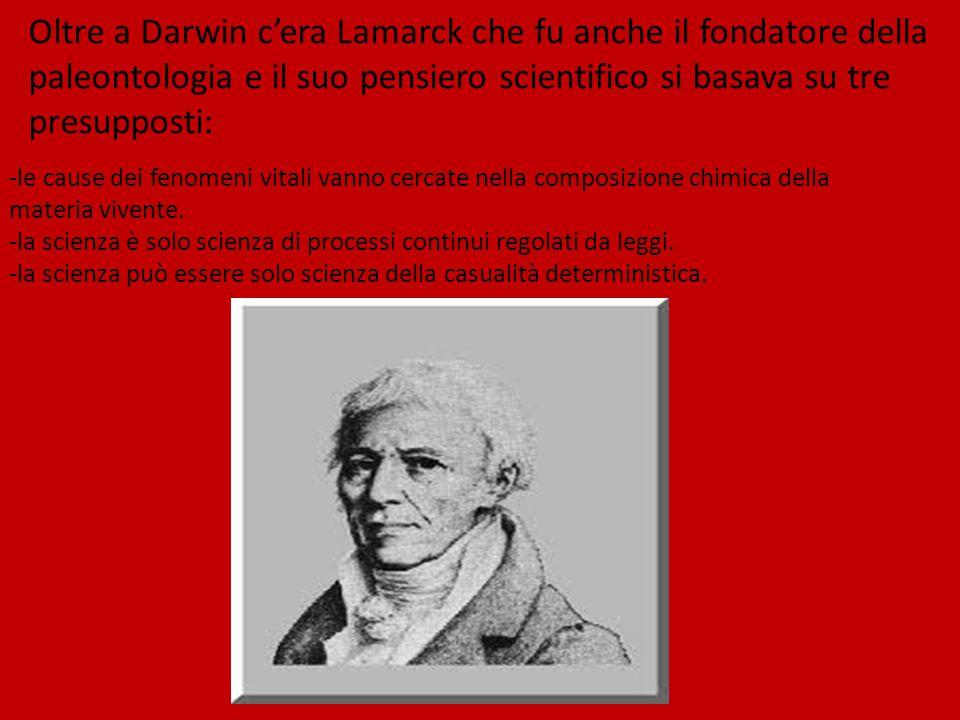 Oltre a Darwin c'era Lamarck che fu anche il fondatore della paleontologia e il suo pensiero scientifico si basava su tre presupposti: