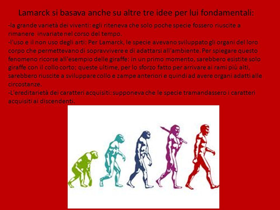 Lamarck si basava anche su altre tre idee per lui fondamentali: