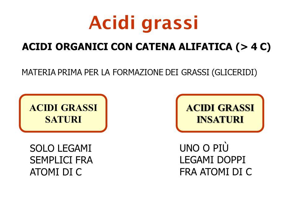 Acidi grassi ACIDI ORGANICI CON CATENA ALIFATICA (> 4 C)