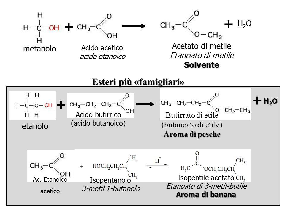 + + + + Esteri più «famigliari» H2O Acetato di metile metanolo