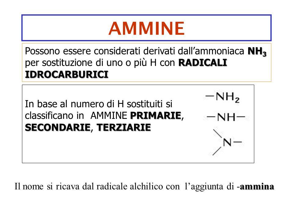 AMMINE Possono essere considerati derivati dall'ammoniaca NH3 per sostituzione di uno o più H con RADICALI IDROCARBURICI.