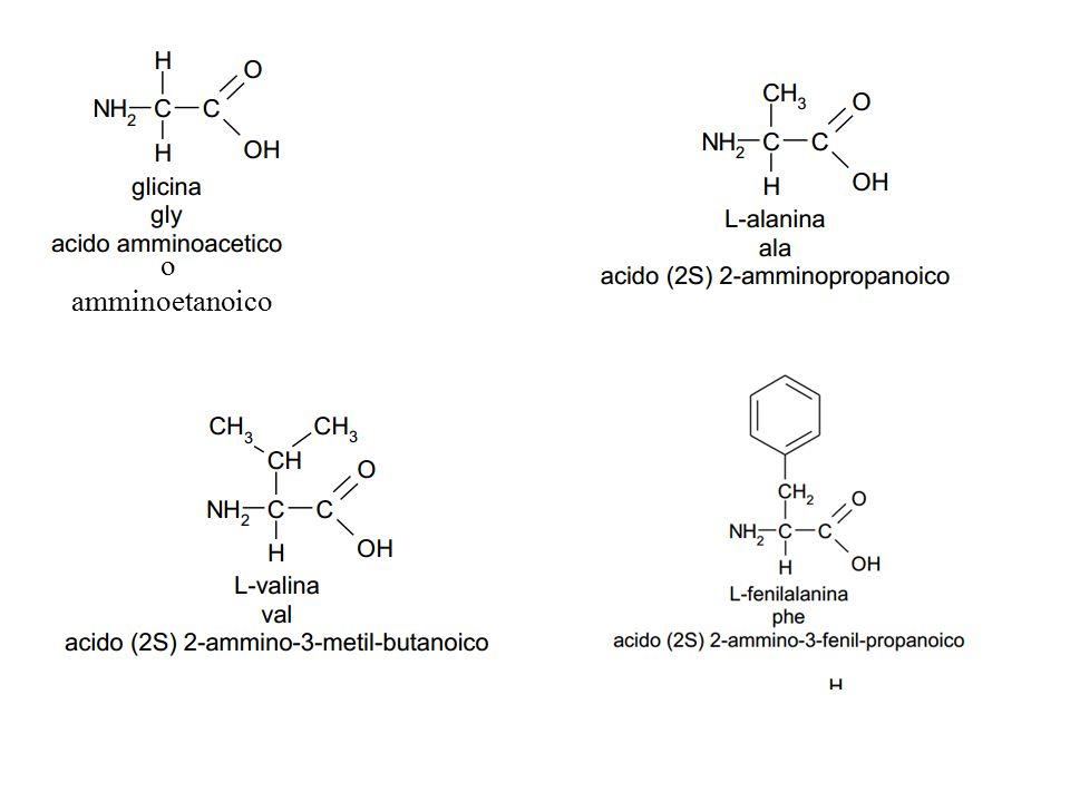 o amminoetanoico
