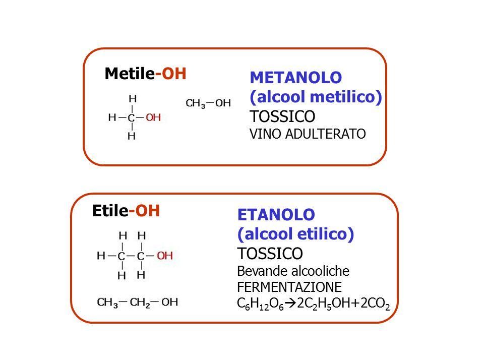 Metile-OH METANOLO (alcool metilico) TOSSICO Etile-OH ETANOLO