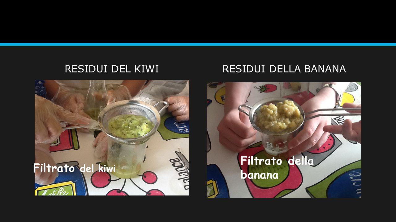 Filtrato della banana Filtrato del kiwi RESIDUI DEL KIWI