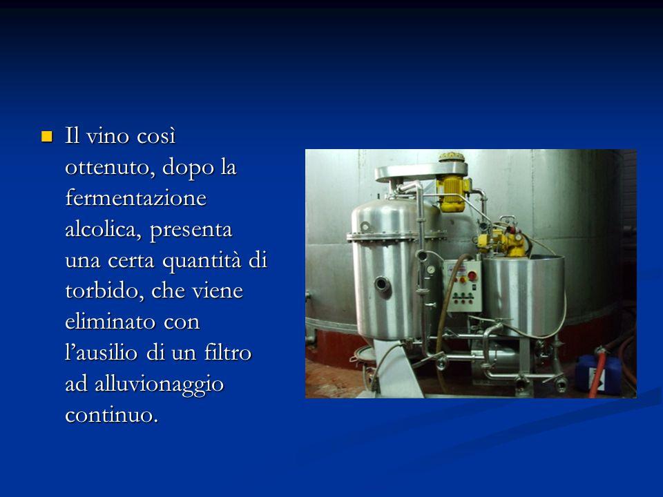 Il vino così ottenuto, dopo la fermentazione alcolica, presenta una certa quantità di torbido, che viene eliminato con l'ausilio di un filtro ad alluvionaggio continuo.