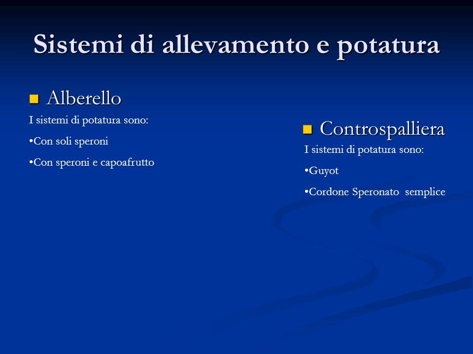 Sistemi di allevamento e potatura