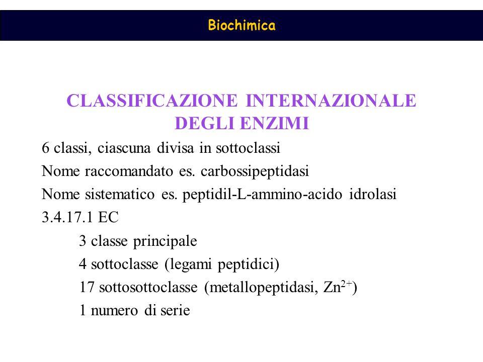 CLASSIFICAZIONE INTERNAZIONALE DEGLI ENZIMI