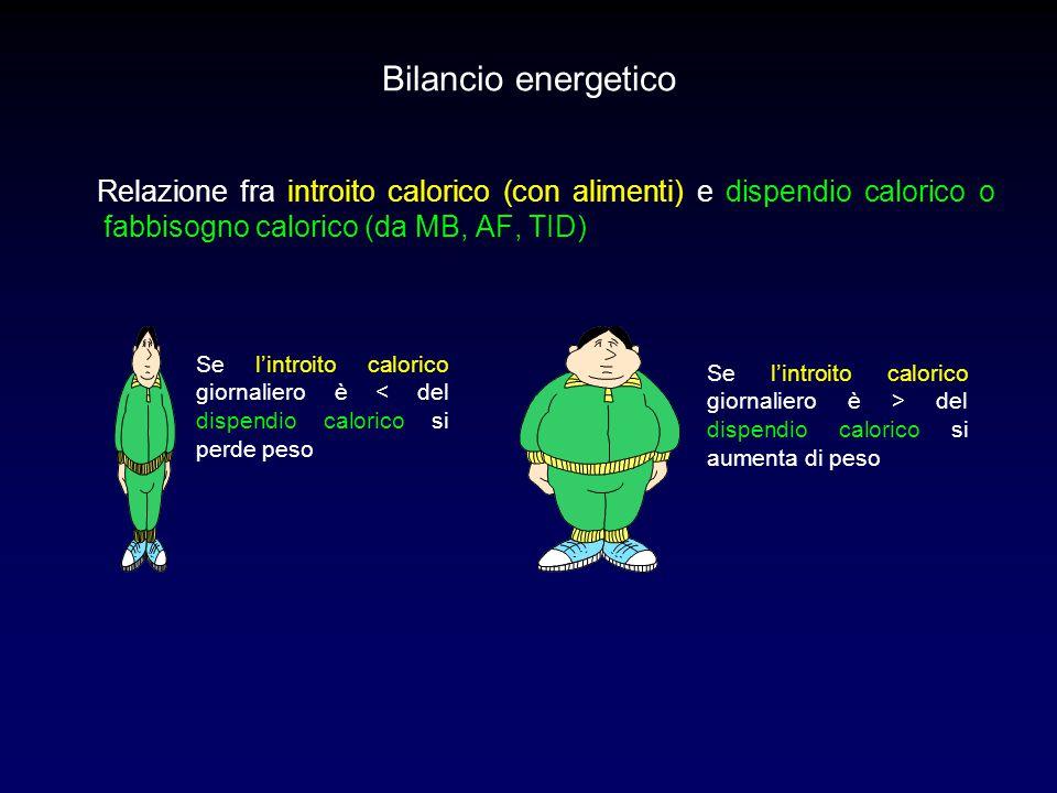 Bilancio energetico Relazione fra introito calorico (con alimenti) e dispendio calorico o fabbisogno calorico (da MB, AF, TID)